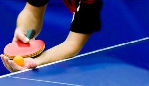 stiga table tennis paddle luxury Dunlop Nitro Power Table Tennis Bat Stock